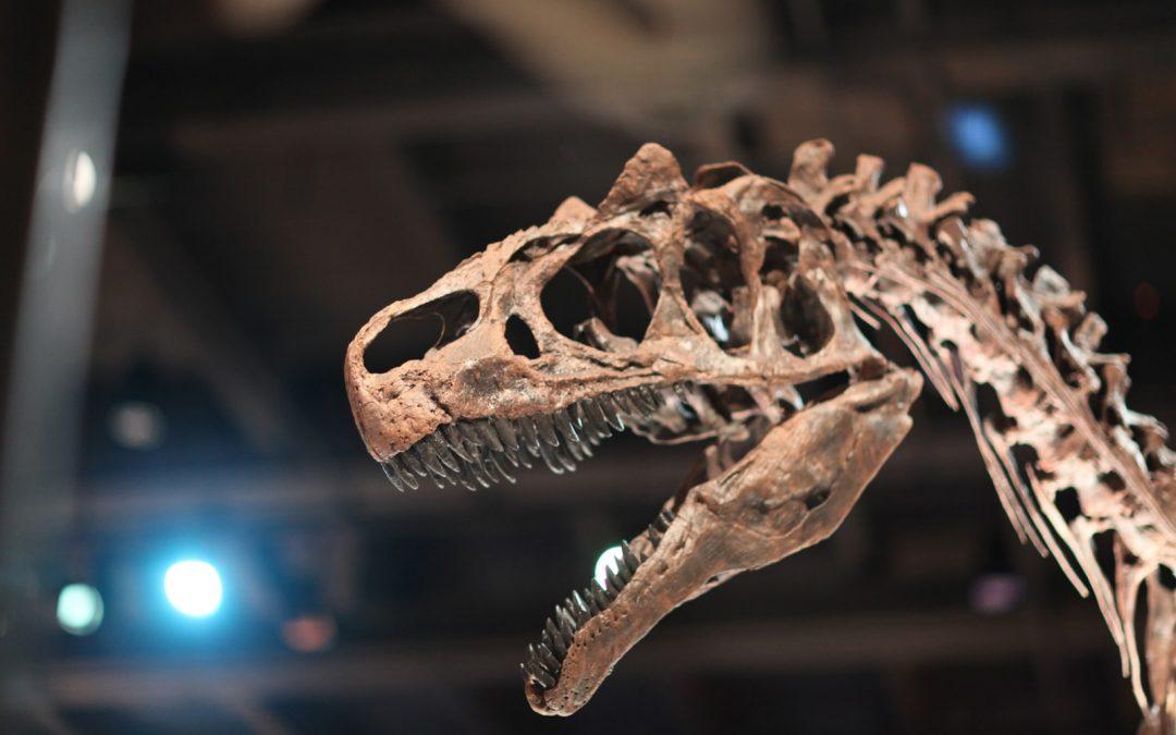 Les dinosaures auraient eu des lèvres pour protéger leurs dents pointues !
